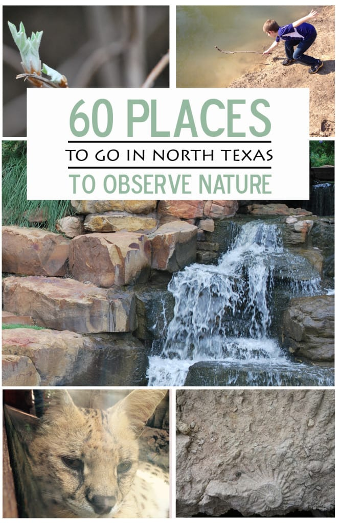 60 Places to go in north Texas to enjoy nature
