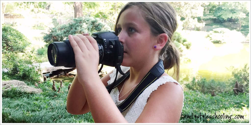 let explorers loose with a camera in the Japanese Gardens