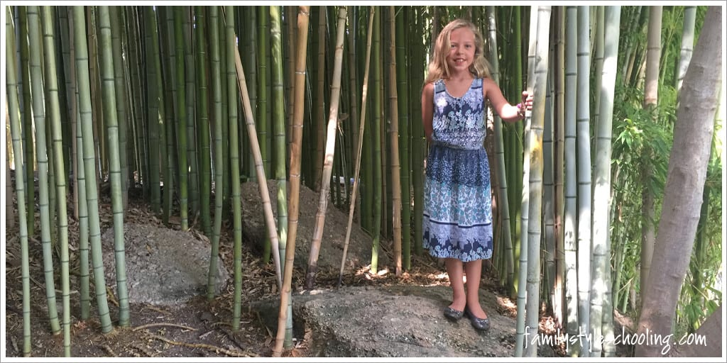 playing in the bamboo at the Japanese Gardens