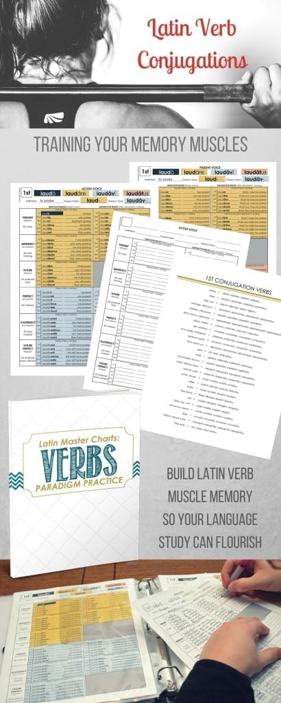 Latin Verb Conjugation