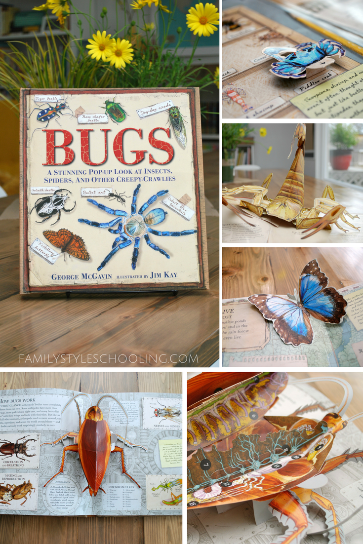 Gardening with Bugs
